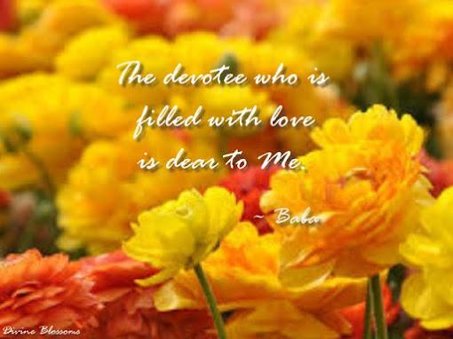 The Devotee