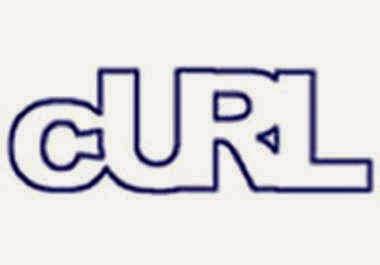 Replace file_get_contents/fopen Menggunakan cURL