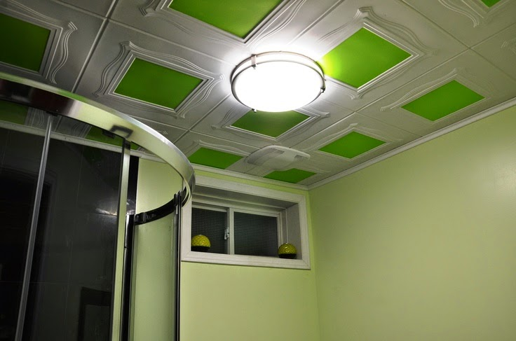 Basement Bathroom Ceiling Ideas Instant Knowledge