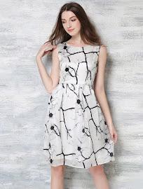Sleeveless Black Dandelion White Dress