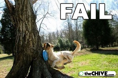 Funny animal fail pictures |Clickandseeworld is all about Funny ...