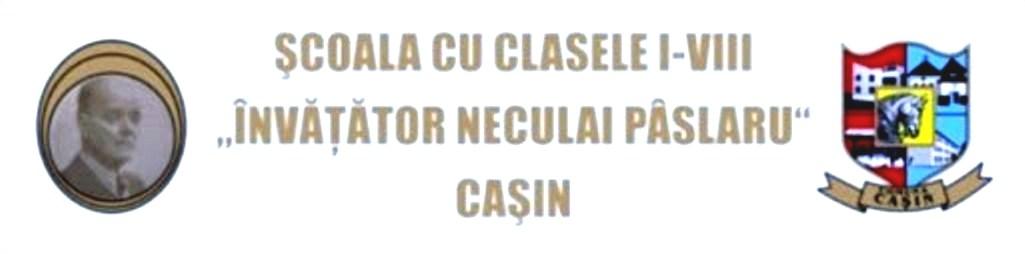 """Şcoala cu clasele I–VIII """"Invatator N. Pâslaru""""- Caşin, jud. Bacǎu"""