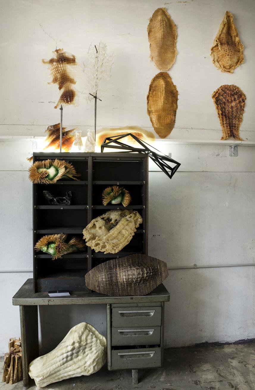 JORGE AYALA: L\'Atelier de Jorge Ayala à Saint-Ouen, 77-81 Rue des ...
