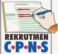 Persyaratan Umum pendaftaran online CPNS 214