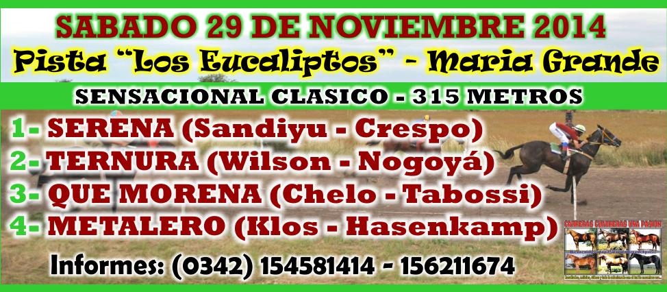 MARIA GRANDE - REUNION 29.11.2014