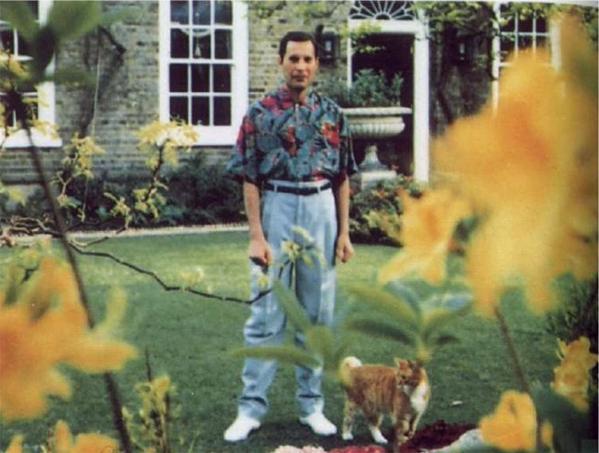 The last picture taken of Freddy Mercury, circa 1991