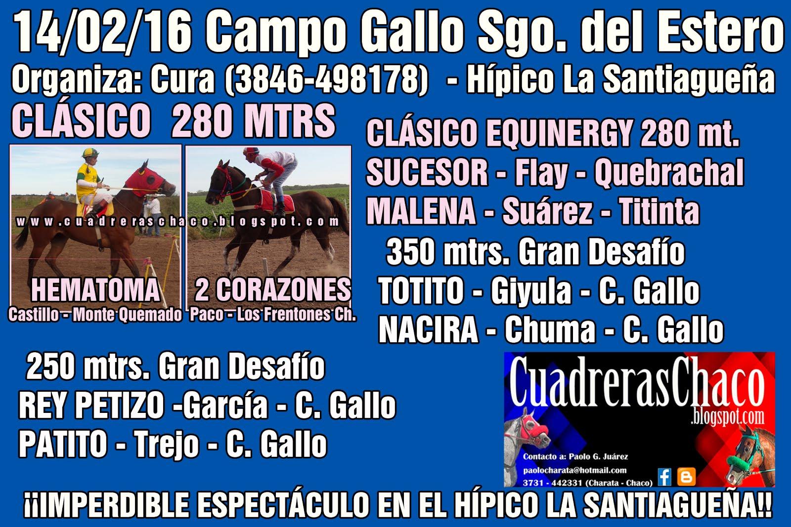 campo gallo 14-2-16