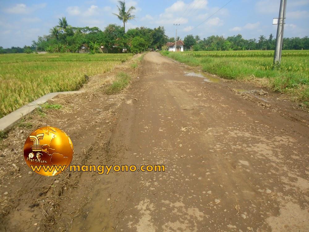 FOTO : Jalan berlubang yang berhasil ditimbun oleh para Regazza sekitar 1 KM.