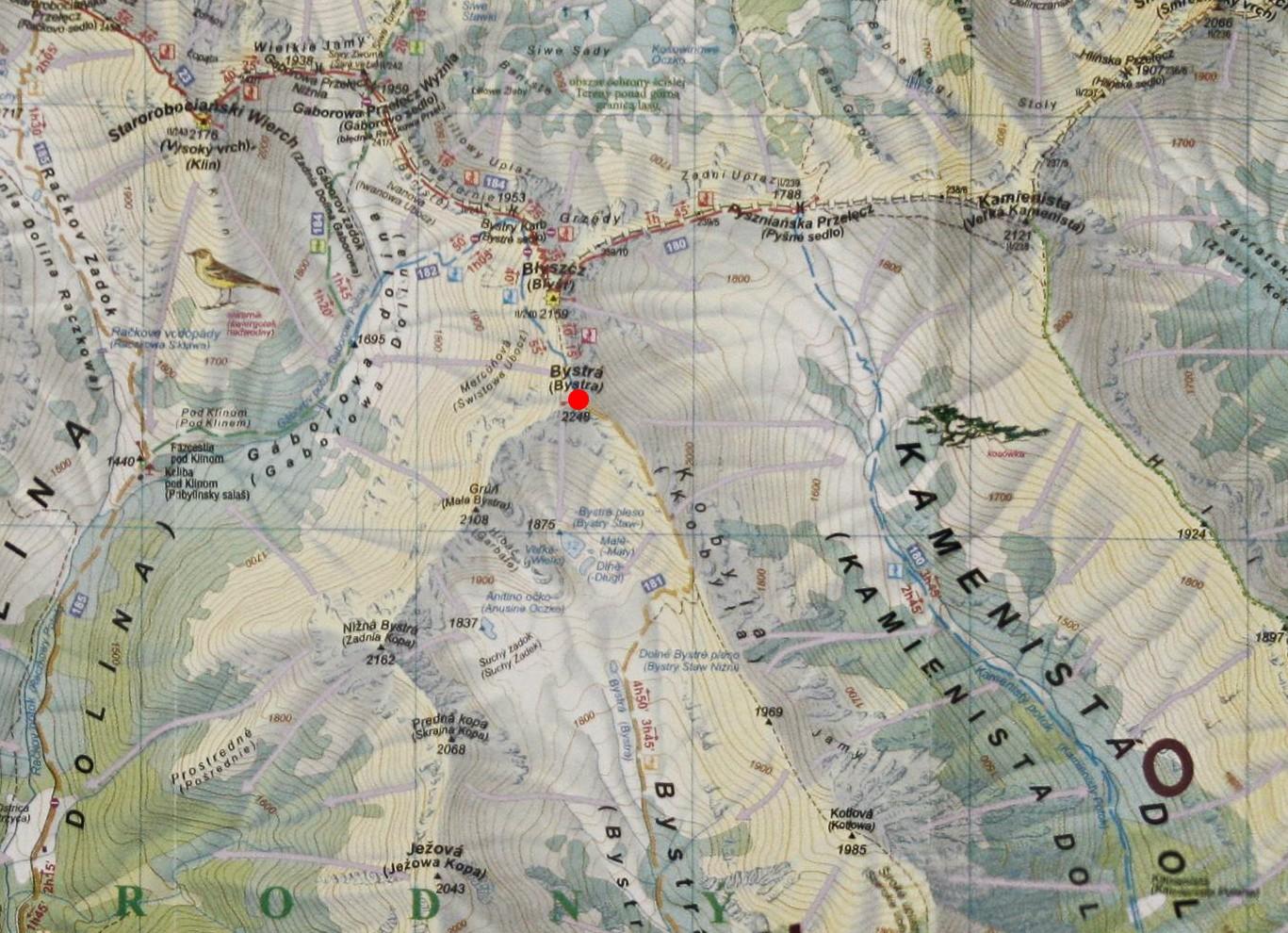 Bystra na mapie