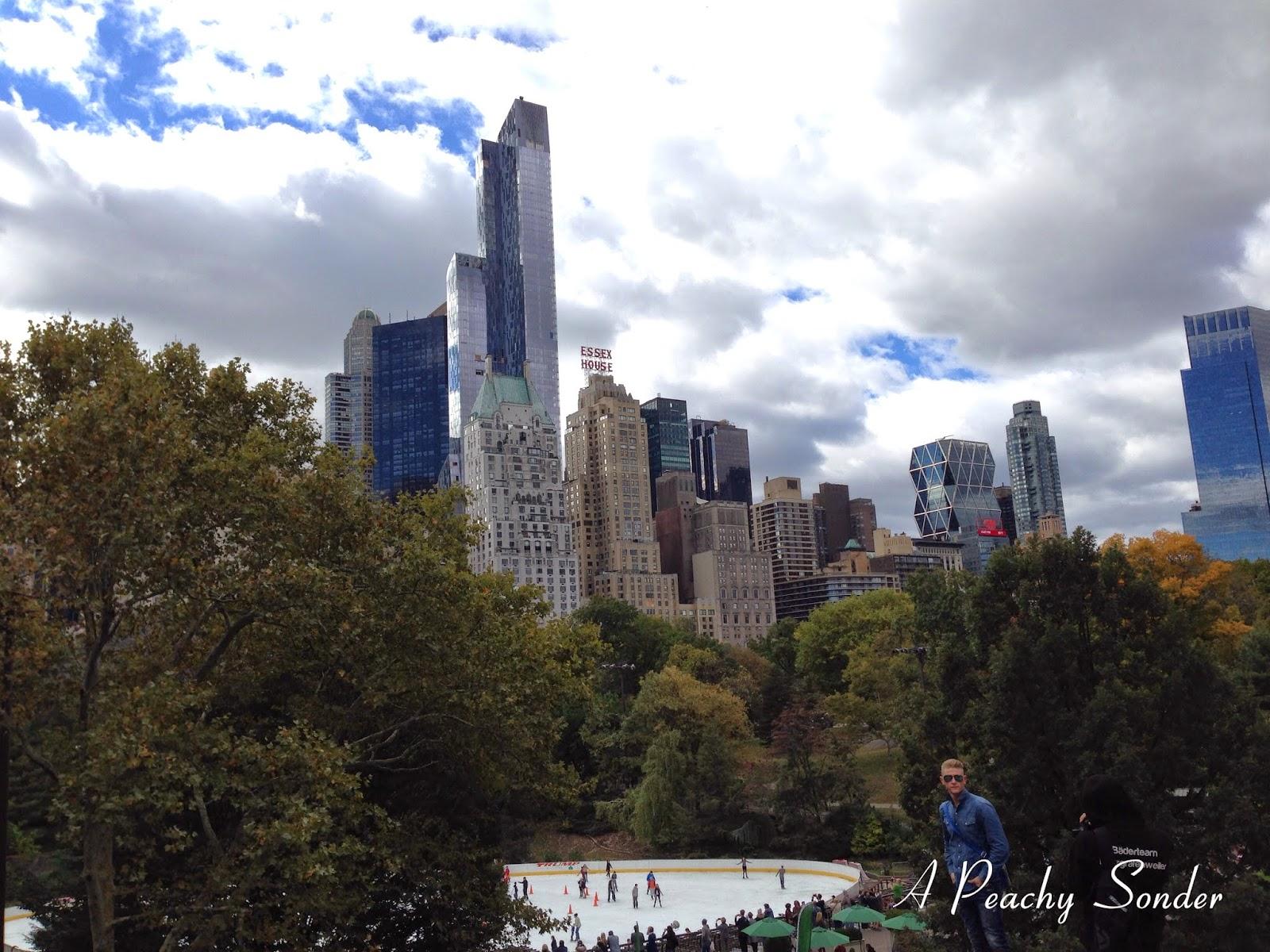 Central Park, NYC, skyline