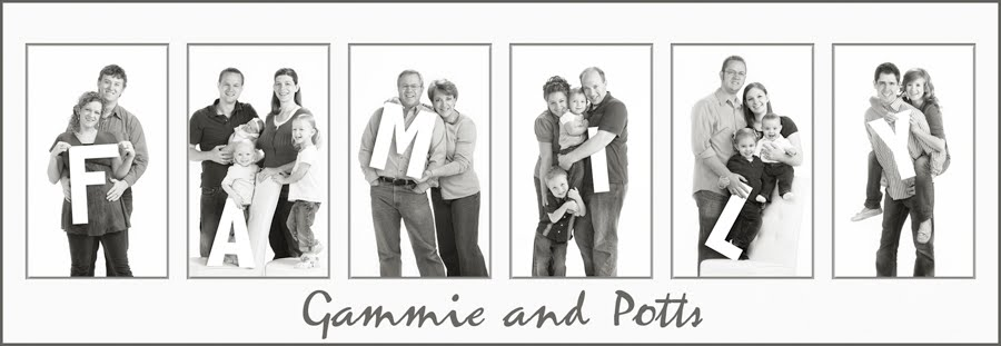 Gammie and Potts