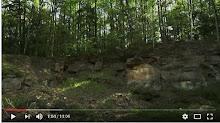 Wideo Suchedniów Naturalnie