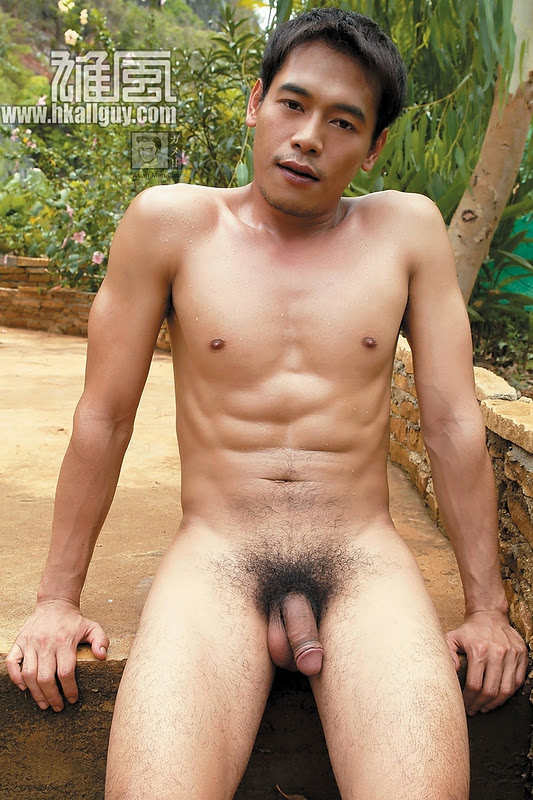 Hairy Gay Asian Cock
