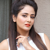 Parul Yadav Photos at South Scope Calendar 2014 Launch Photos 252895%2529