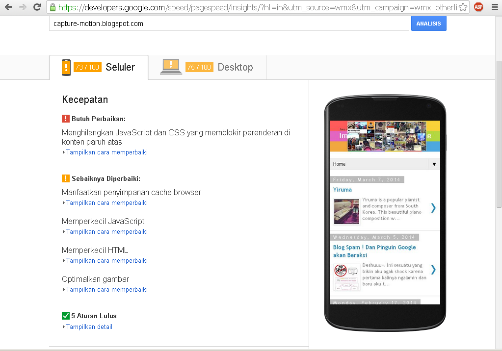 Speed test page dari google webmaster untuk capture-motion.blogspot.com