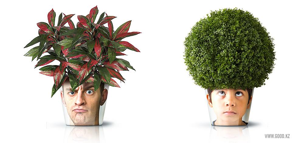 Mix and chic cool diy project alert human face flower pots for Plants de fleurs