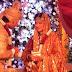 Unseen Pics of Saifeena Kapoor WEDDING