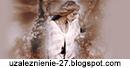 uzaleznienie-27