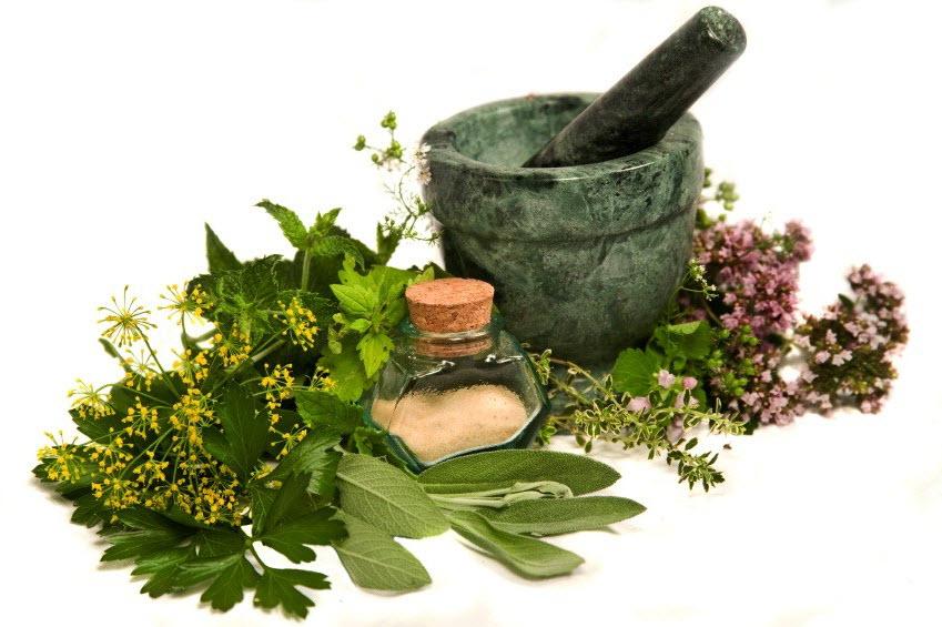 http://2.bp.blogspot.com/-FzdDf0eXh3Q/VfQw7WMB6_I/AAAAAAAAG14/77xp_Fgxfcg/s1600/Medicinal-Herbs.jpg