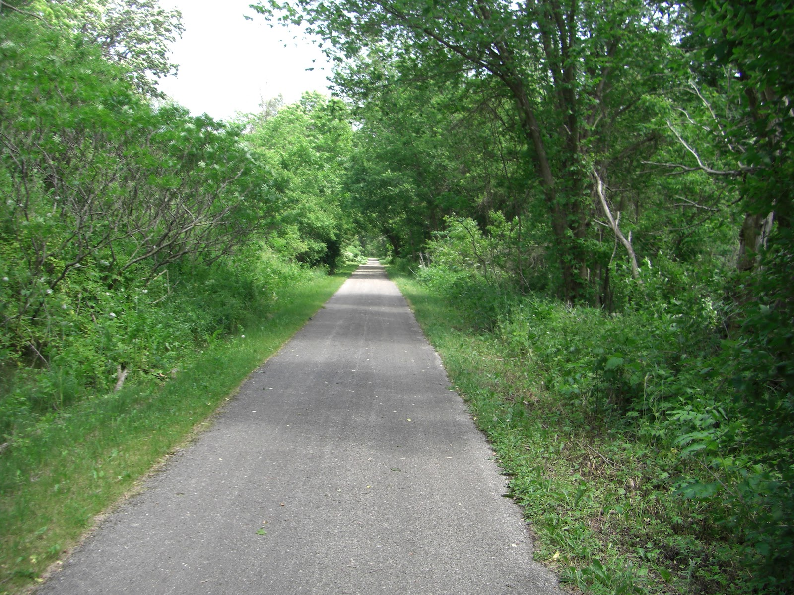 Mn Bike Trail Navigator Trail Photo Gallery Root River