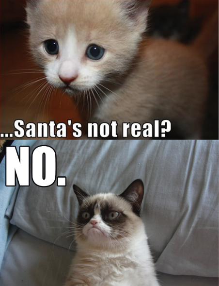 Grumpy cat no santa s not real