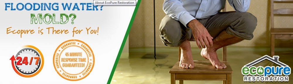 Eco Pure Restoration