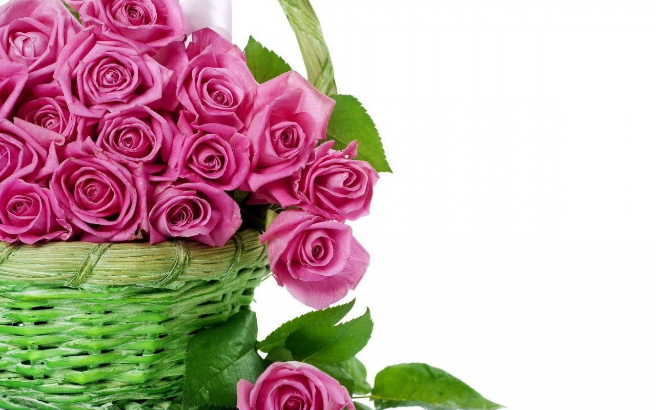 Beautiful Flower Wallpaper For Desktop 3D Free Download Full Size