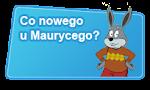 Łączka Maurycego Marchewki