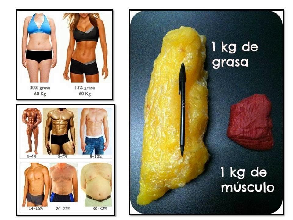 perder-grasa-perder-peso.jpg