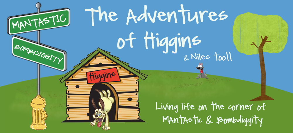 The Adventures Of Higgins