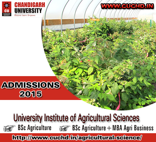 Agri Business Programs in Chandigarh University