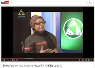 Entrevista Tv Andes II parte