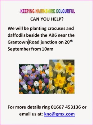 Daffodil Planting Sat Sep 20th
