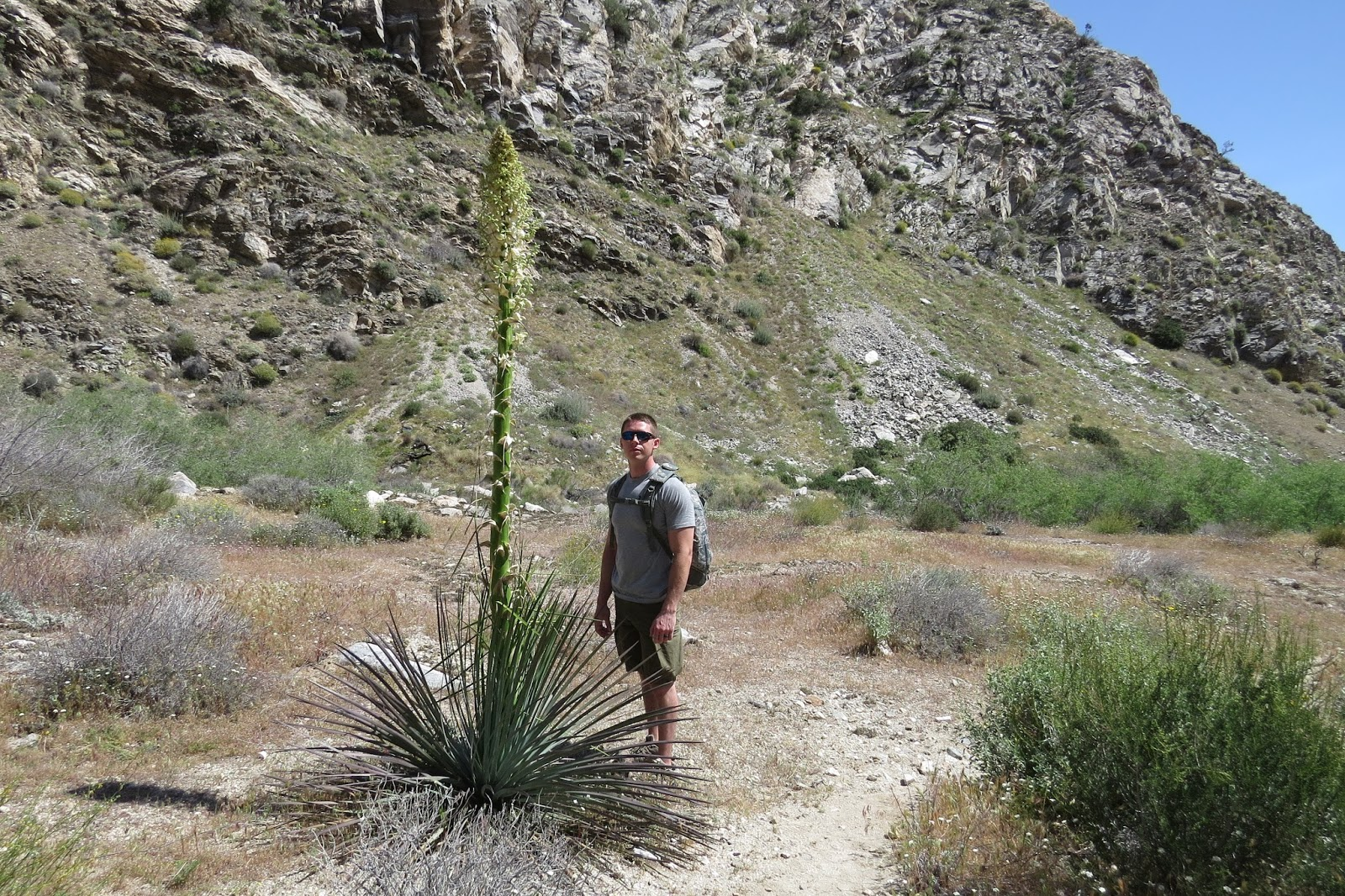 Palm Desert California, Whitewater Canyon Painted Trail Hike at Whitewater Preserve, Aunie Sauce Travels