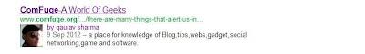 Google + Profile image in Google Seach Engine