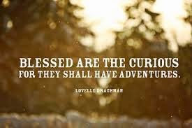 Blessed are the curious...