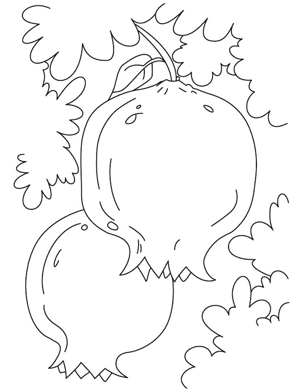 Free Pomegranates Coloring Pages title=