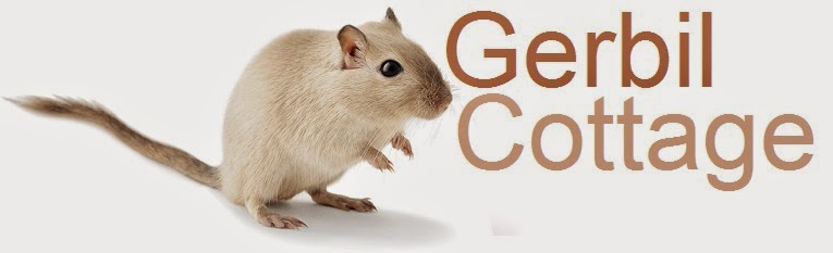 Gerbil Cottage