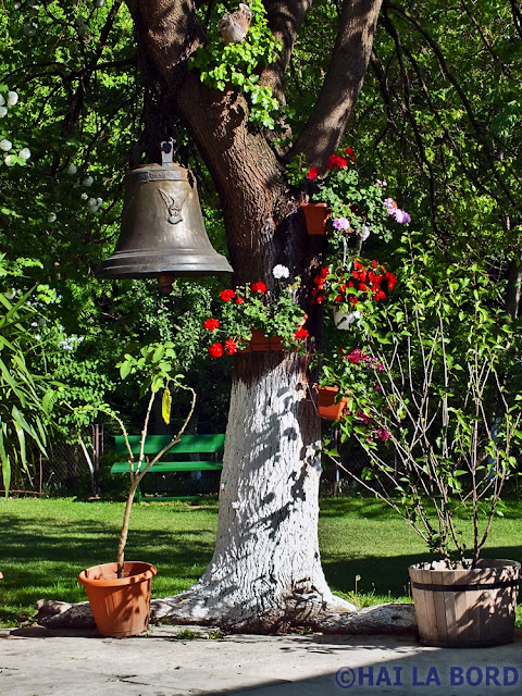 clopot si flori manastirea trivale pitesti