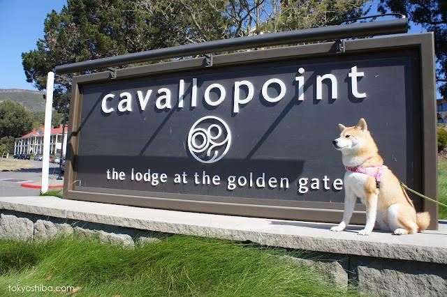 Cavallo Point Hotel San Francisco Ca