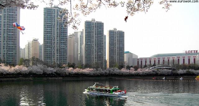 Barco en el lago Seokchon rodeado de flores de cerezo