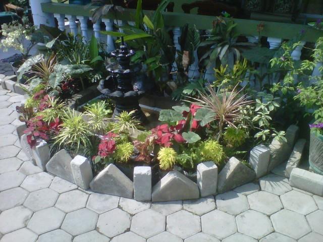 foto alam kita taman rumah minimalis dengan kolam mini
