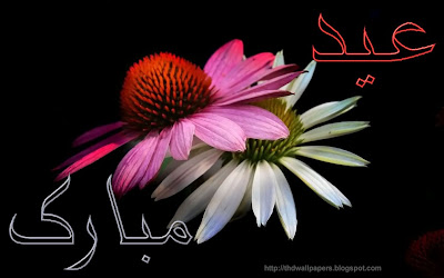 Eid Ul Adha Zuha Mubarak Flowers Wallpapers Greeting Cards 2012 in Urdu 015