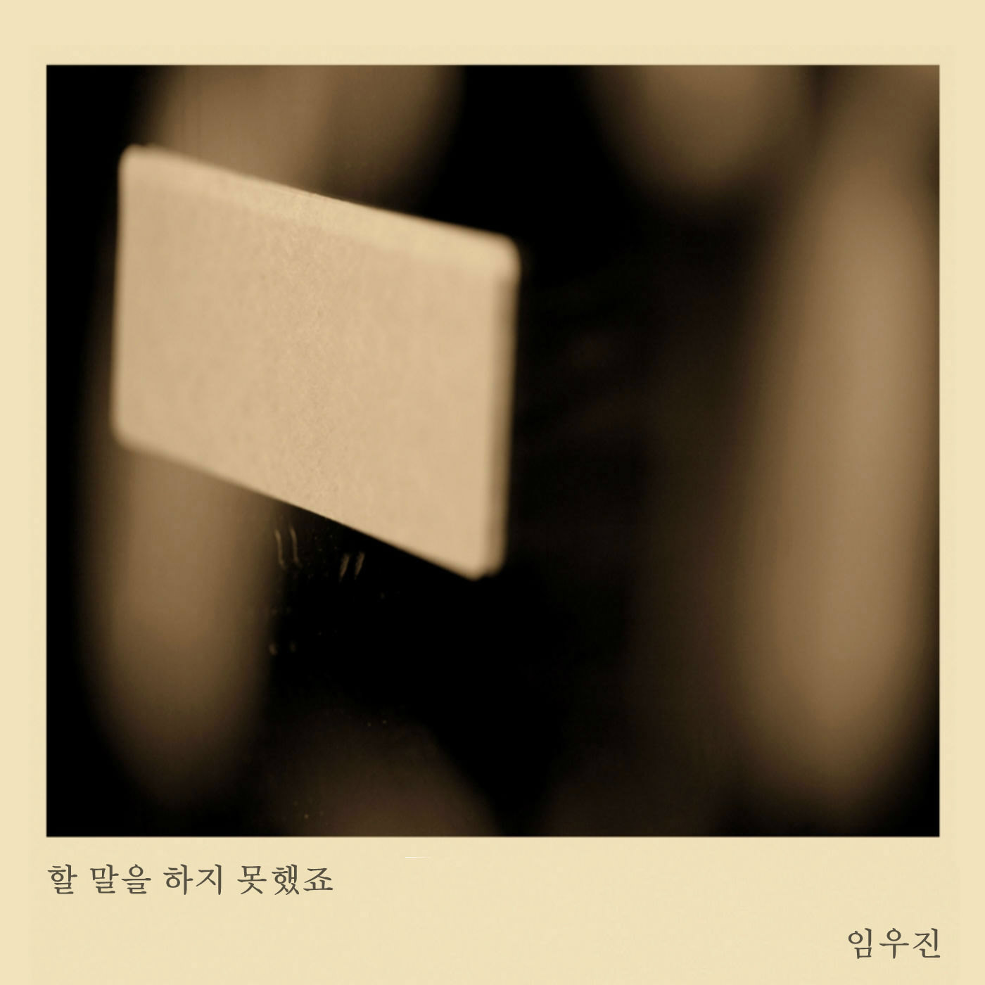 [Single] Lim Woo Jin – 할 말을 하지 못했죠