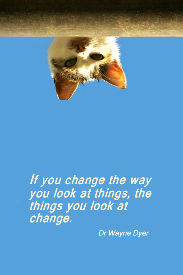 visual quote - image quotation for PERSPECTIVE - If you change the way you look at things, the things you look at change. - Dr Wayne Dyer