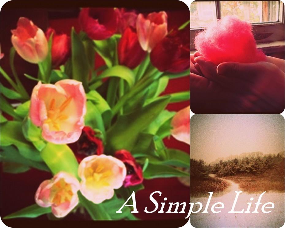 A Simple Life: TASTE