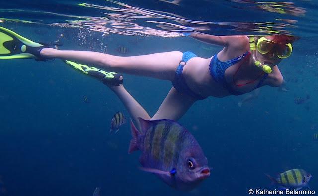 Snorkeling Ko Phi Phi Islands, Thailand