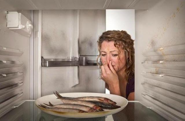 Những thói quen sử dụng tủ lạnh gây hại cho sức khỏe