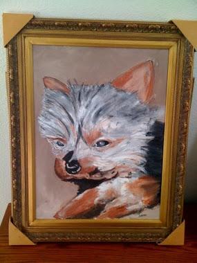 D- 7    ART'S DOG