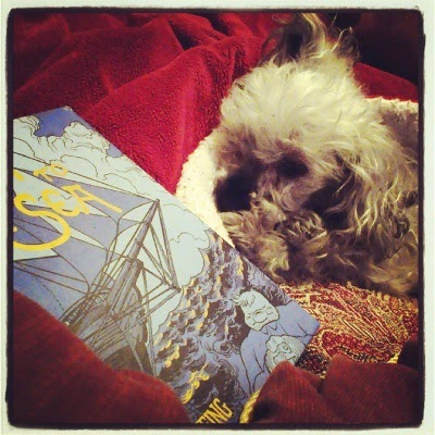 Murchie lays within a red blanket nest, his right ear resting along the edge so it sticks up almost straight. In front of him sits a small, blue-toned hardcover. The cover depicts a sailing ship, with a large man seemingly asleep atop the waves in the bottom right hand corner.